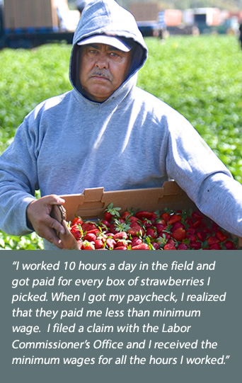 Strawberry picker: I worked 10 hours a day in the field and got paid for every box of strawberries I picked. When I got my paycheck, I realized that they paid me less than minimum wage.  I filed a claim with the Labor Commissioner's Office and I received the minimum wages for all the hours I worked.